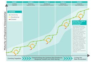 A Pathway to Transform Health and Well-Being Through Regional Stewardship