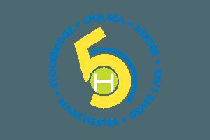 5 Healthy Towns, MI